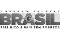 Brazil mini