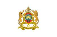 emblem 1 mini